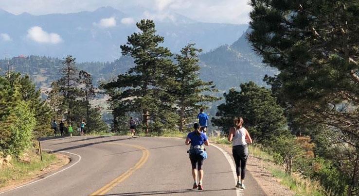 Hwy 7 Runners, Views, Pines